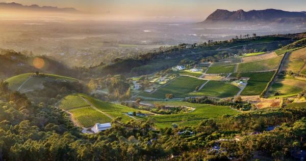 Cape-Town-constantia-vineyard-mountains-aerial-view-oblique-view-1145204.jpg